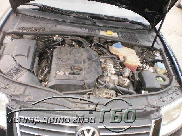 P8140223.JPG