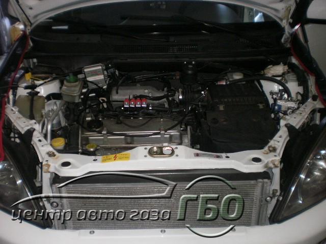 P9050387.JPG